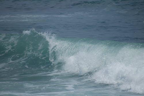 Free stock photo of ocean, wave