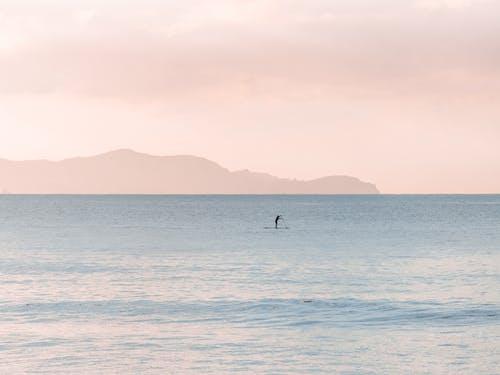 Безкоштовне стокове фото на тему «sup, берег моря, весло, веслування»