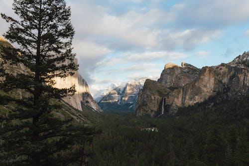 Бесплатное стоковое фото с HD-обои, вечнозеленый, вид на горы, вода