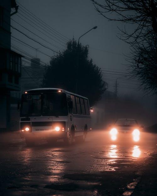 White Van on Road during Night Time