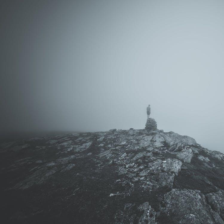 Free stock photo of black and white, fog, foggy