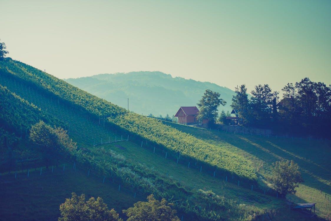 åkermark, ärm, berg