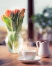cup, mug, blur