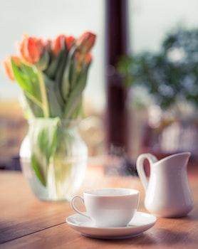 Free stock photo of cup, mug, blur, focus