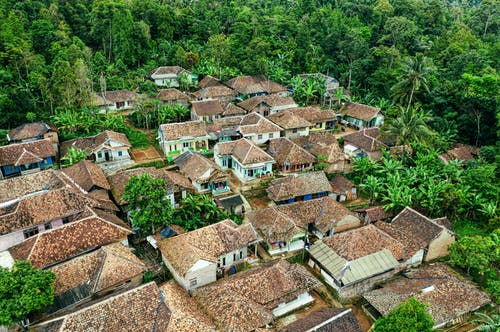 Traditional Asian village surrounded by tropical woods