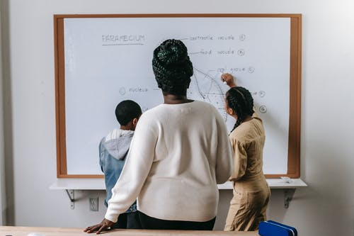 Back view of anonymous African American woman watching on pupils writing on whiteboard in classroom