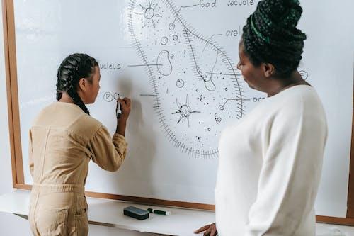 Black woman teaching ethnic girl in school