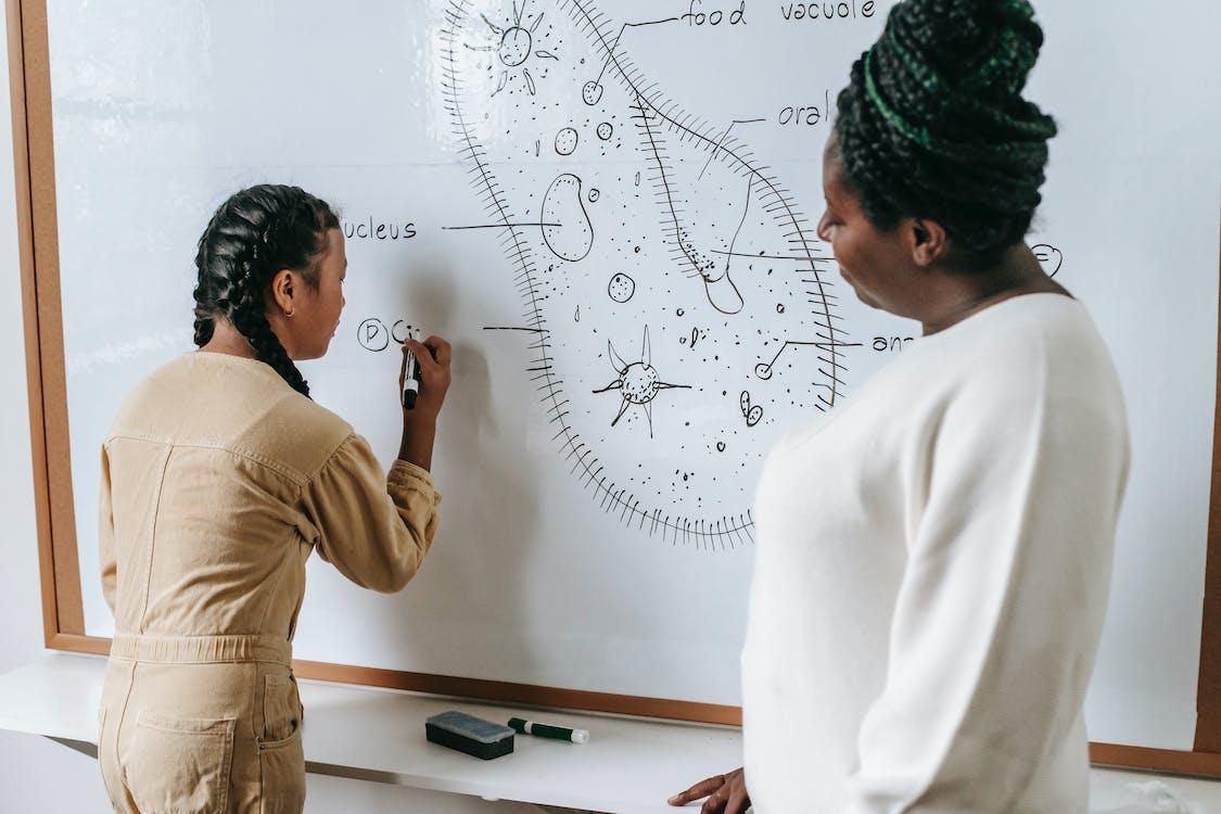 Mujer Negra Enseñando A Niña étnica En La Escuela