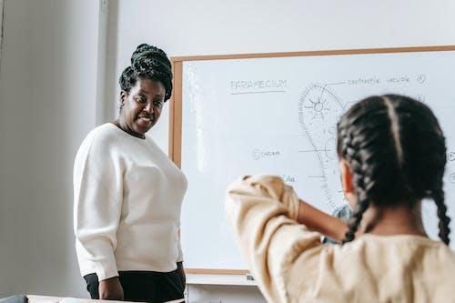 Professeur Noir Communiquant Avec Une Adolescente En Classe