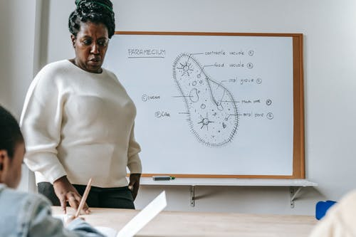 Serious African American female teacher standing near desk and explaining information during biology lesson