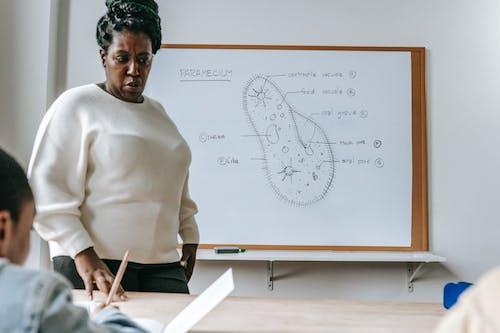 Zwarte Vrouw Taak Uit Te Leggen Aan Studenten