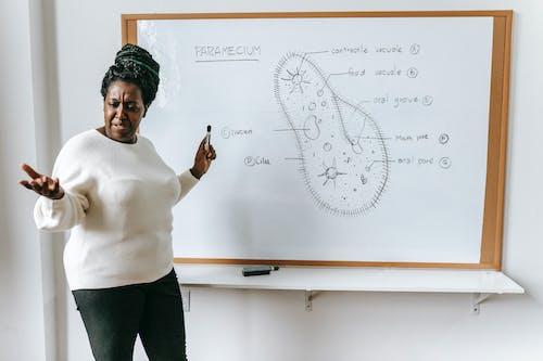 Schwarze Frau Mit Markierung Nahe Whiteboard