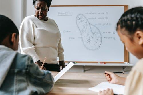 Crop serious woman explaining task to pupils