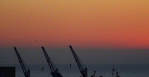 Free stock photo of cranes, sunrise