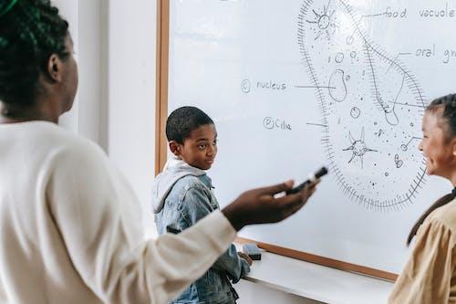 Profesor Negro Con Niños Inteligentes En El Aula