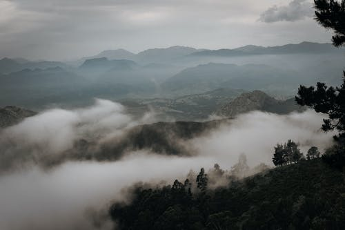 Mountainous valley with green trees and fog