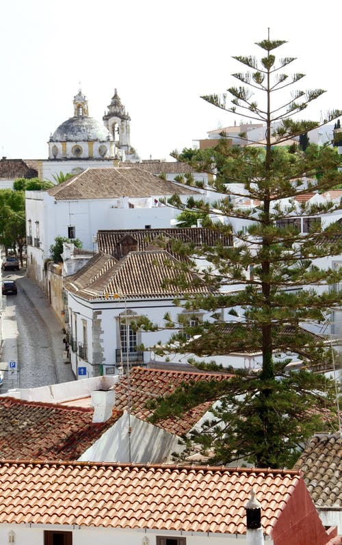 Free stock photo of portugal, roofs, street