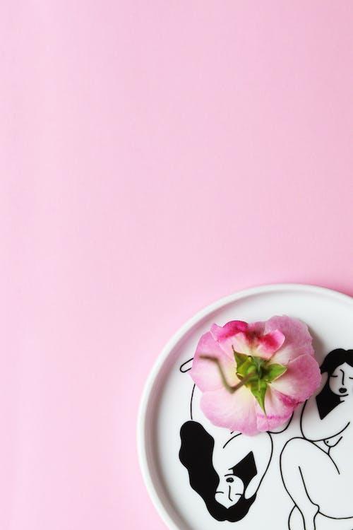Pink Flower on Ceramic Plate