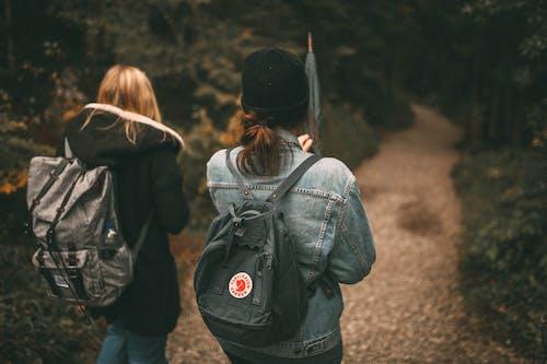 Fotobanka sbezplatnými fotkami na tému batoh, cestička, chôdza, lesy