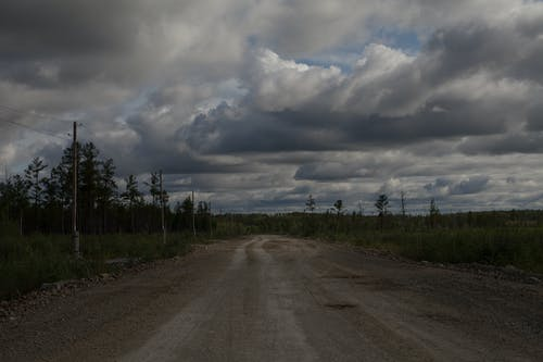 Scenic view of straight empty roadway with traces between trees under cloudy sky in twilight