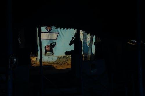 Foto stok gratis asli, bayangan hitam, berlindung