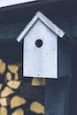 bird house, birdhouse, aviary