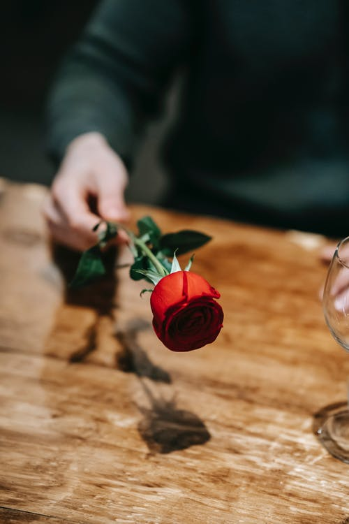 Crop anonymous male in casual clothes with fresh red rose sitting at wooden table in cafe