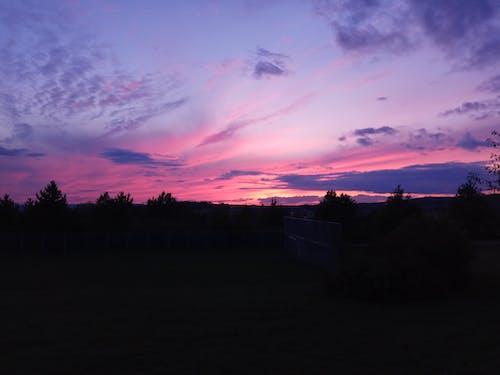 Darmowe zdjęcie z galerii z fioletowy, natura, zachód słońca