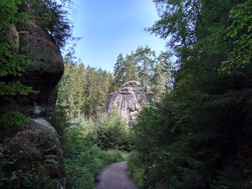 Darmowe zdjęcie z galerii z mechate skały, natura, skały