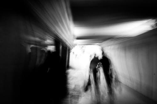 Ingyenes stockfotó alagút, arctalan, átjáró témában