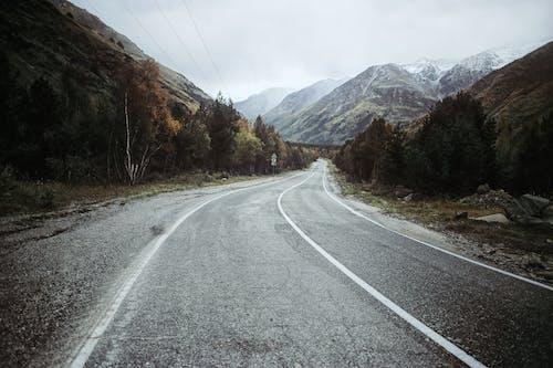 Gratis stockfoto met adembenemend, asfalt, assortiment