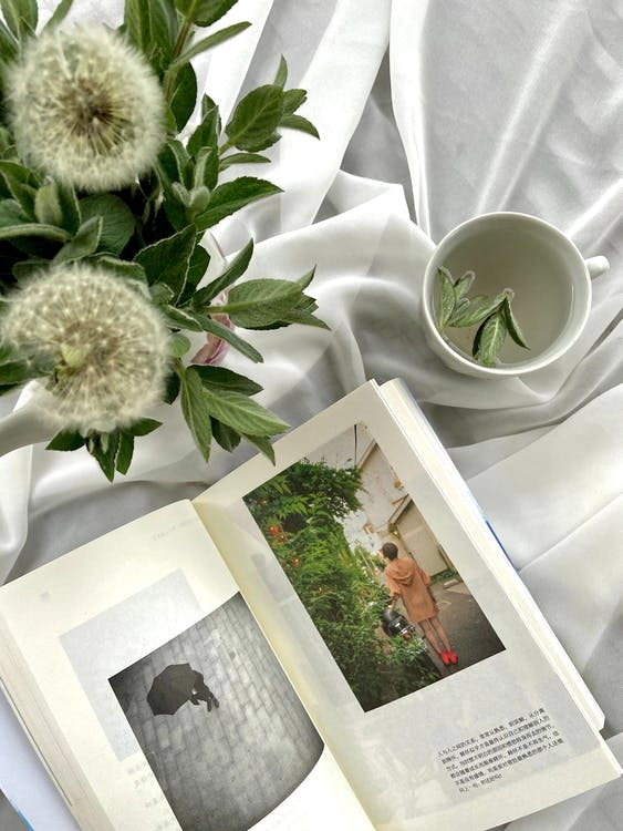 Top view arrangement of opened book placed on white cloth near cup and fluffy white dandelion in vase