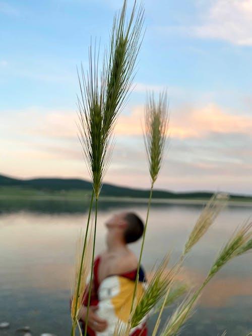 Rerumputan Sereal Melawan Wanita Yang Berdiri Di Tepi Danau