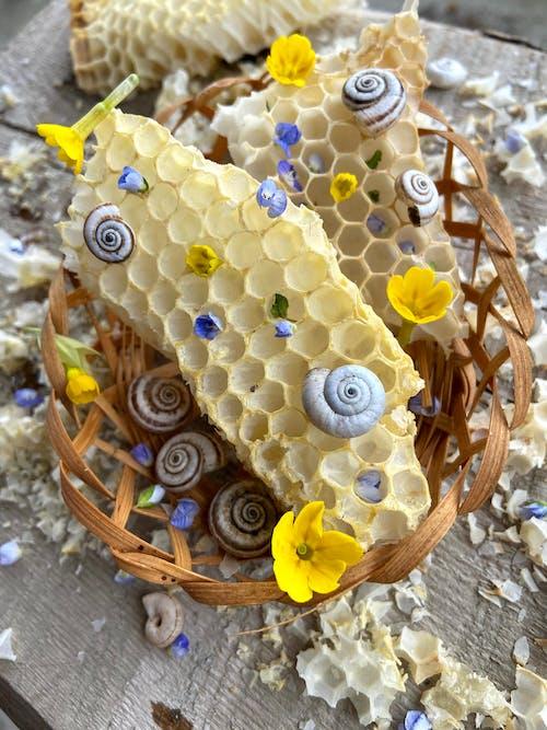 Lilin Lebah Dengan Kulit Kerang Di Keranjang Jerami