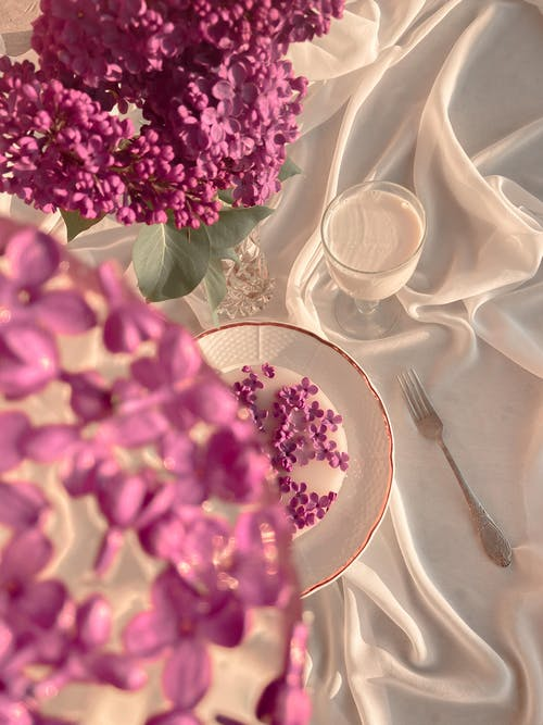 Pink flowers in vase and frozen petals on plate