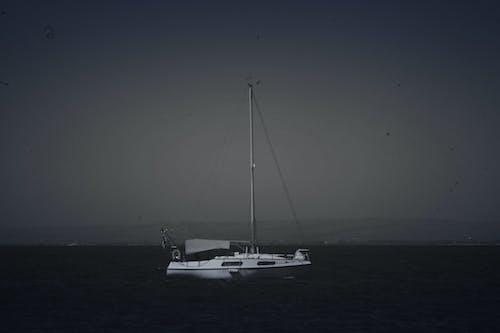 希臘, 愛, 航程, 迪基 的 免費圖庫相片