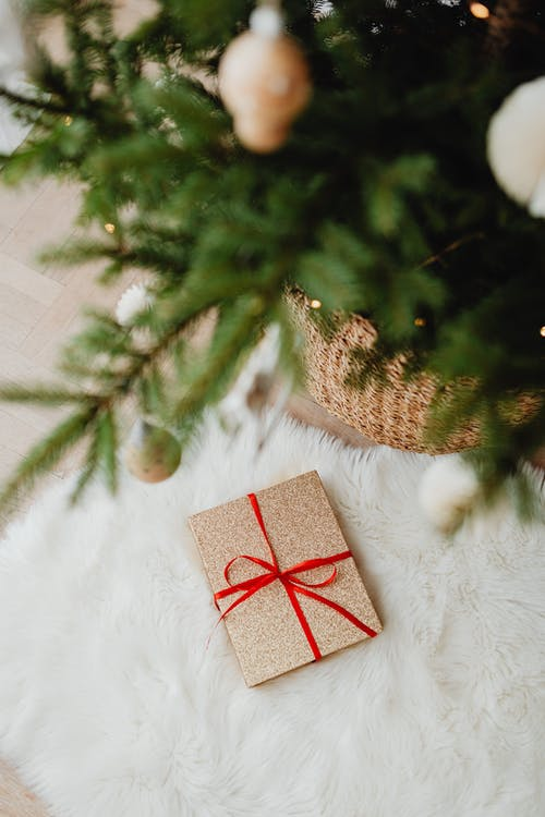 Fotos de stock gratuitas de abeto, alegre, Año nuevo