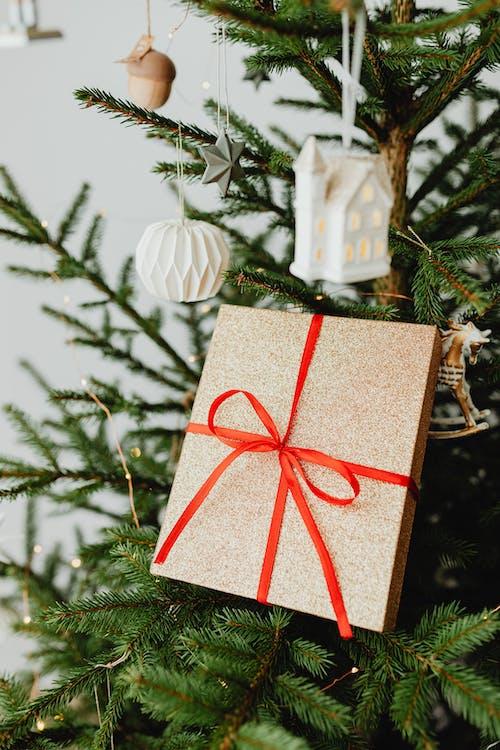 Immagine gratuita di albero di natale, appeso, celebrazione