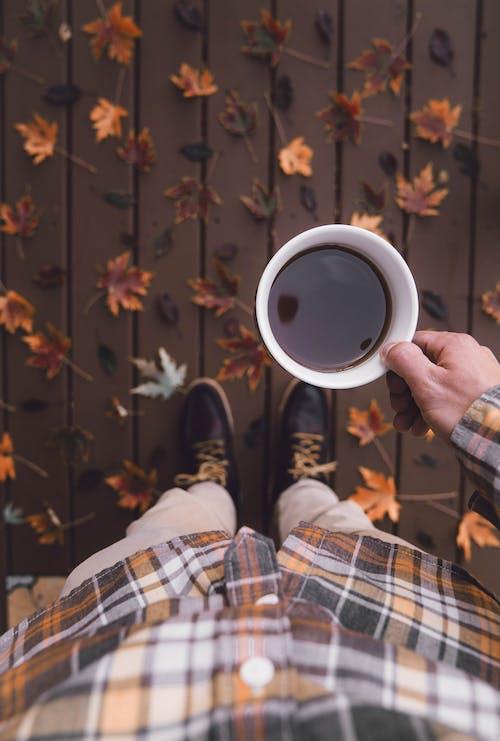 人, 傳統, 冬季 的 免費圖庫相片