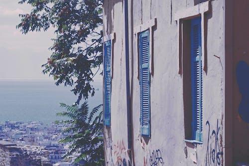 天性, 希臘, 愛, 海 的 免費圖庫相片
