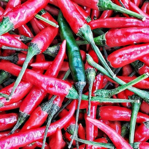 Gratis stockfoto met chili, chili's, chilipeper, chilipepers