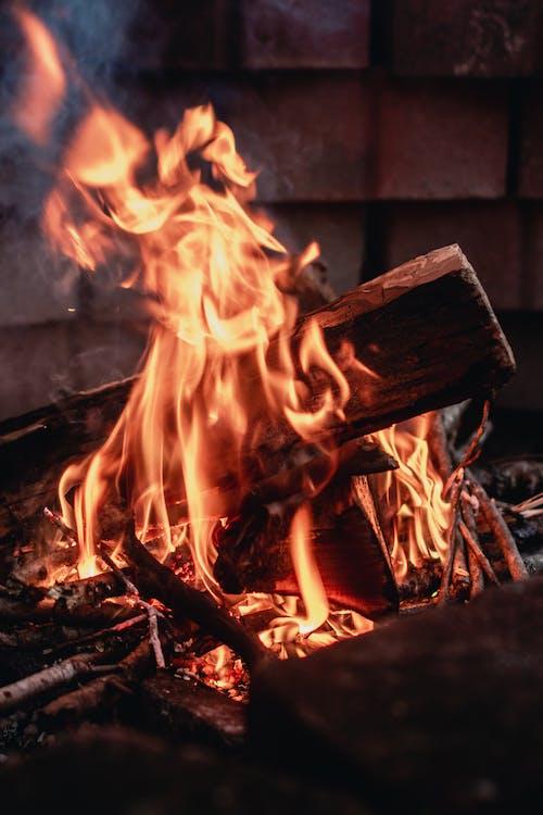 Darmowe zdjęcie z galerii z ciepło, drewno, gorąco