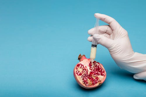 Person Holding Sliced Pomegranate Fruit