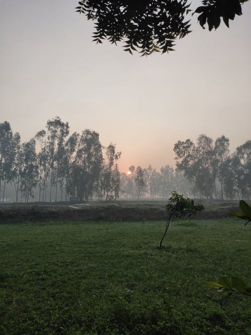 Free stock photo of against the sun, autumn aesthetic, beautiful scenery