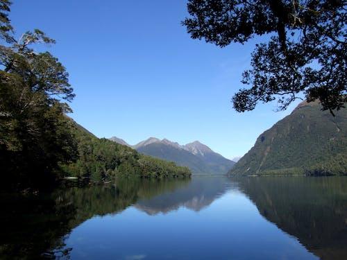 Free stock photo of blue sky, forest, lake gunn