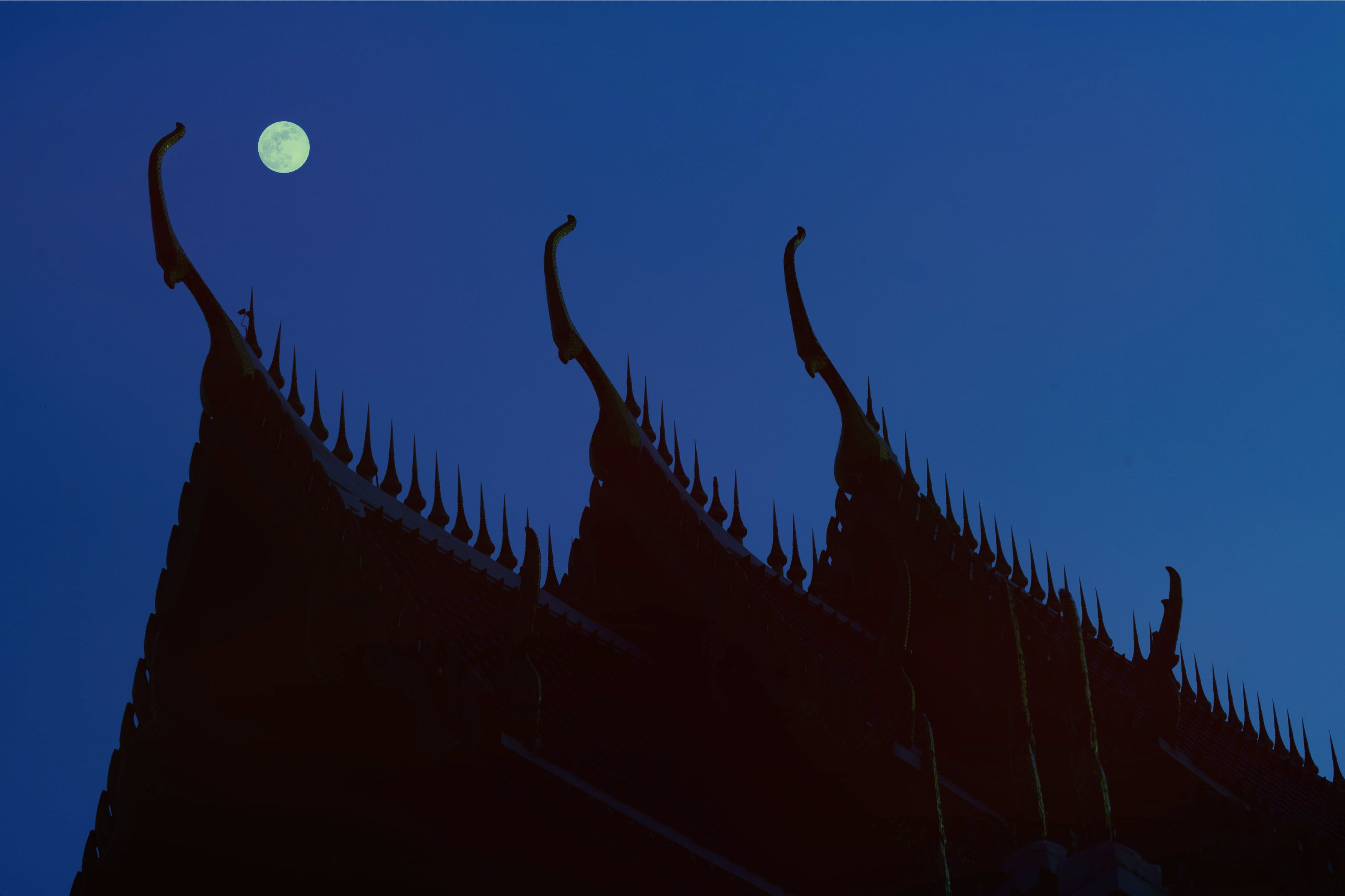 Free stock photo of night, blue, haze, roof