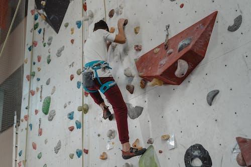 Fotos de stock gratuitas de actividad, alpinista, arnés