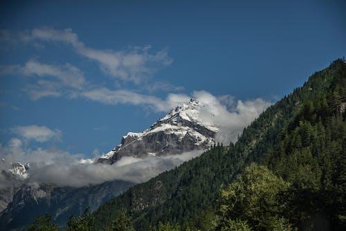 Photos gratuites de alpes, altitude, arbres, aventure