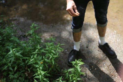 Man in denim shorts fertilizing soil with green plants