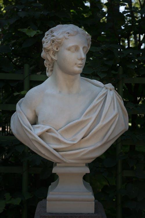 Marble bust in summer garden